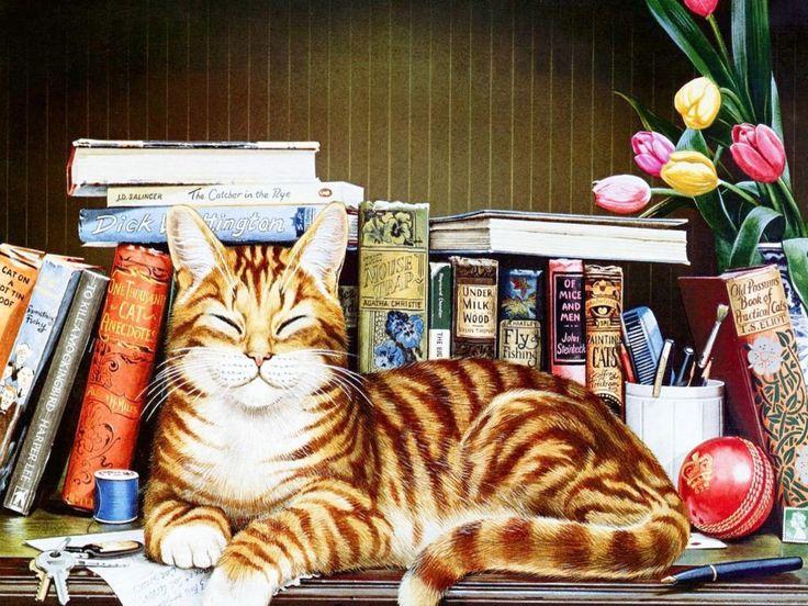 Gatto da biblioteca